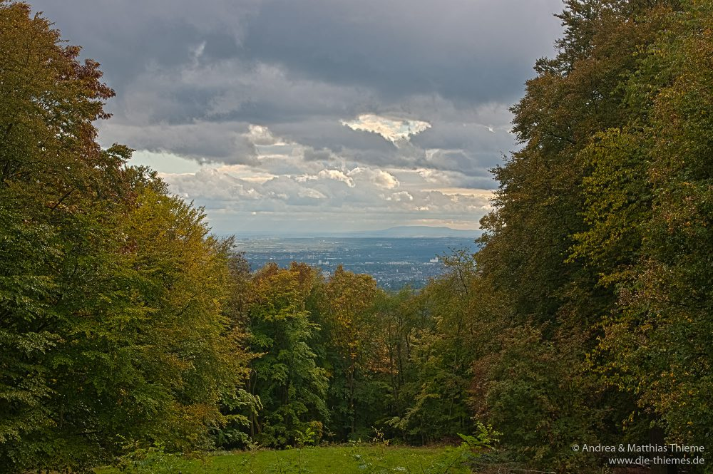 Kellerskopf, Wiesbaden-Naurod
